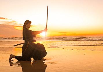 Sompo Samurai Experience